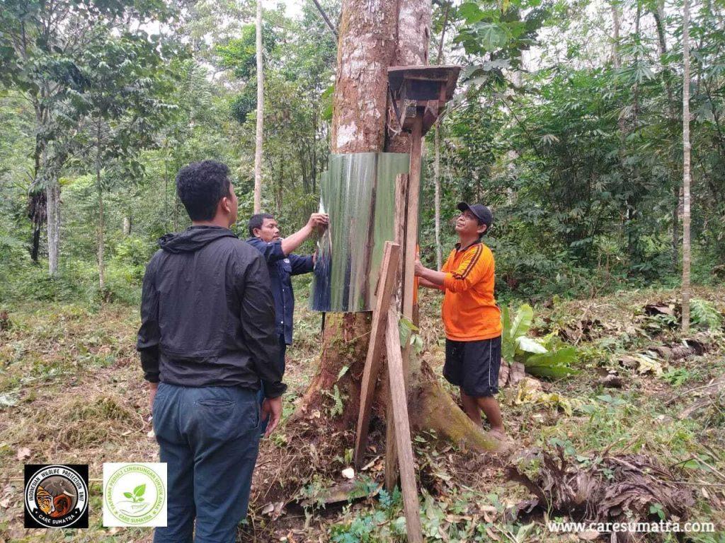 reduce human-wildlife conflict - orangutan project